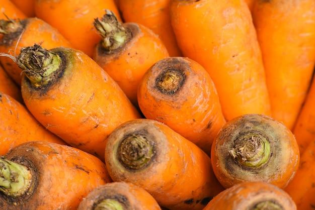 Cenouras com um jardim