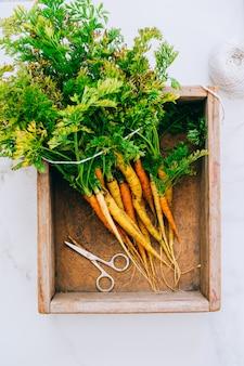 Cenouras de legumes frescos sujos de raízes em caixa de madeira em fundo de mármore, vista plana leigo, topo