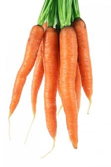 Cenouras em branco