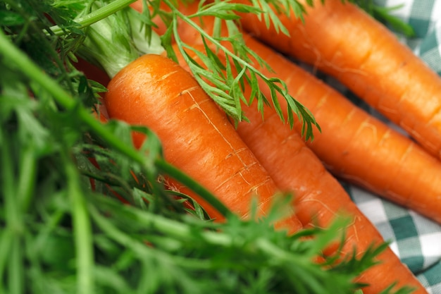 Cenouras frescas na toalha de mesa quadriculada