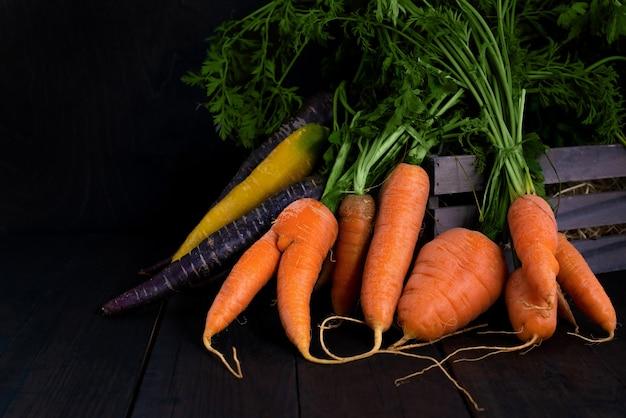 Cenouras orgânicas em cores diferentes