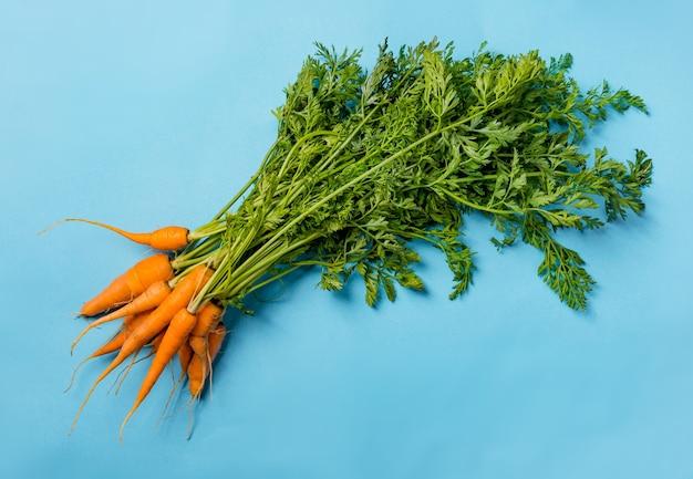 Cenouras orgânicas frescas com folhas verdes sobre fundo azul