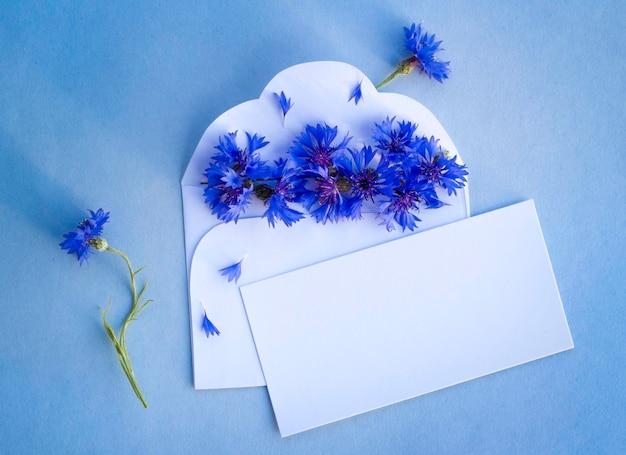 Centáurea azul no cartão em branco de parabéns.