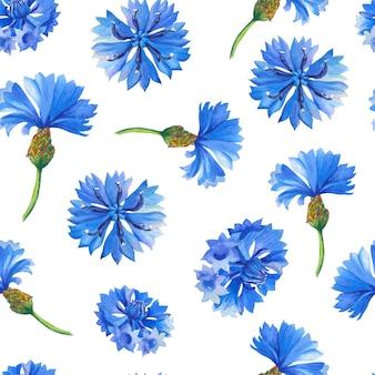 Centáureas azuis. padrão sem emenda floral em aquarela.