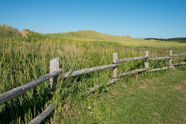 Cerca, ao longo, cavendish, dunelands, rastro, verde, gables, príncipe edward island, canadá