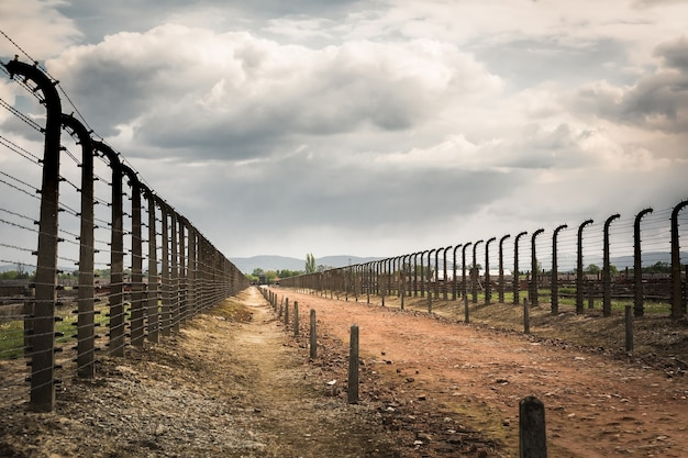Cerca de arame farpado em duas fileiras, campo de concentração alemão auschwitz ii, polônia.