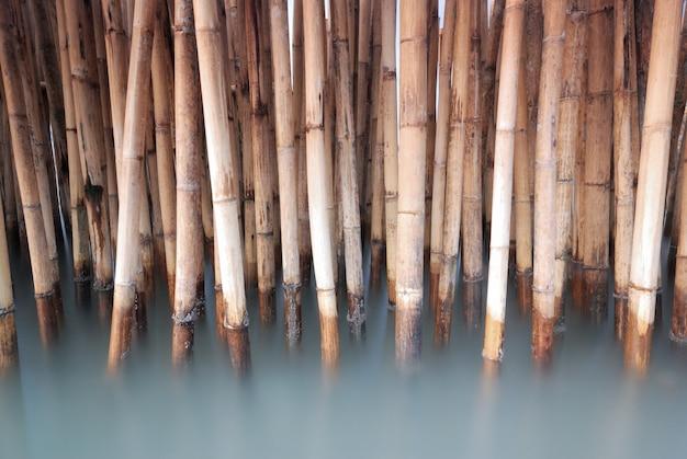 Cerca de bambu velho proteger banco de areia da onda do mar