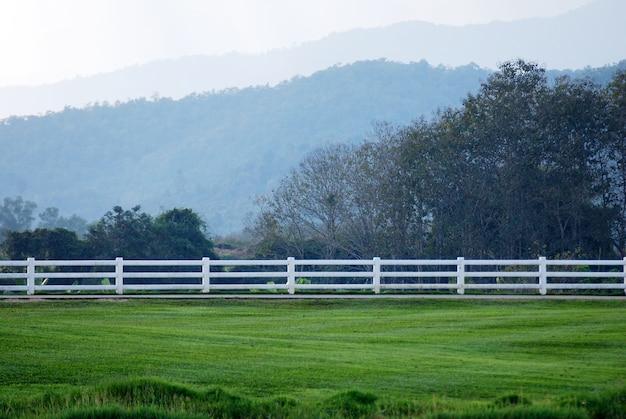 Cerca de madeira branca e grama verde jardins com árvore, fundo de montanha em singha parques