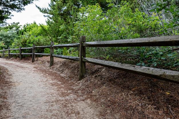 Cerca de madeira e caminho a pé para a praia do oceano