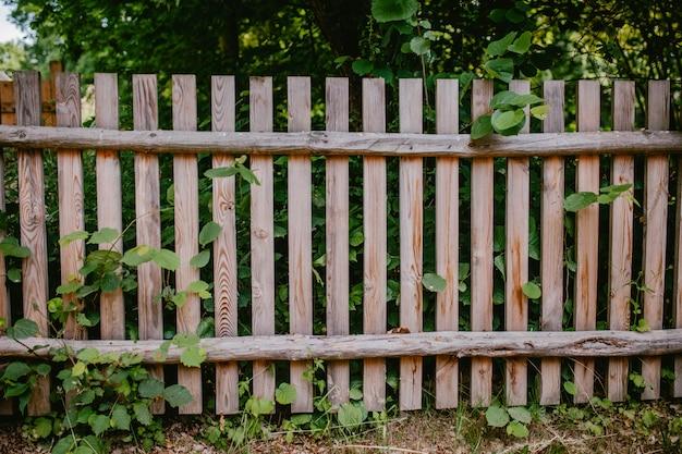 Cerca de madeira velha com vegetação