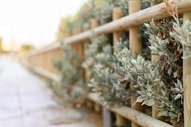 Cerca decorativa de madeira com arbustos