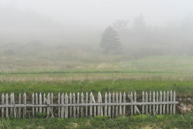 Cerca, em, campo, durante, nevoeiro, fortaleza, de, louisbourg, louisbourg, capa breton, ilha, nova escócia, cana