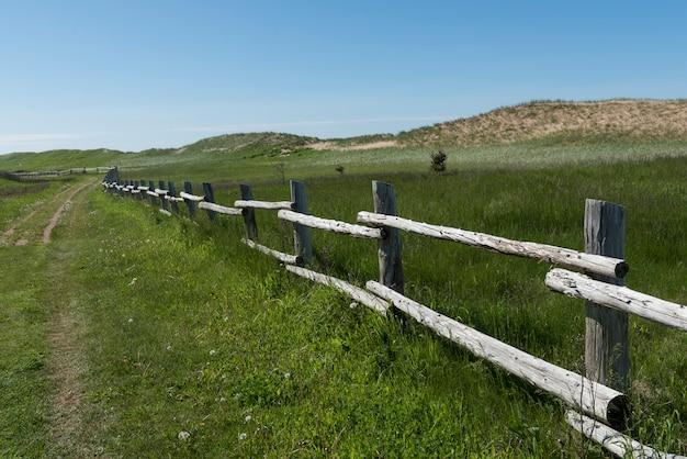 Cerca madeira, ligado, gramíneo, paisagem, novo, glasgow, cavendish, príncipe edward island, parque nacional, príncipe