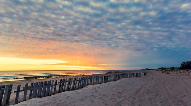 Cerca na praia de areia ao pôr do sol em chipiona