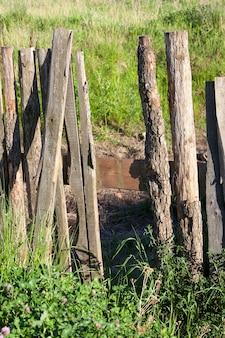 Cerca velha, feita de tábuas de madeira, com defeitos, close, grama crescendo perto de uma cerca