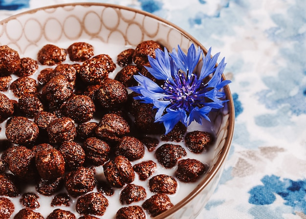 Cereais matinais, cereais de chocolate no leite com flor de centáurea em um guardanapo azul natural, conceito de alimentação saudável para crianças.