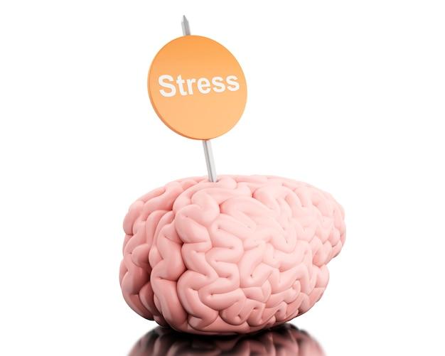 Cérebro 3d com um stress do quadro indicador e da palavra.