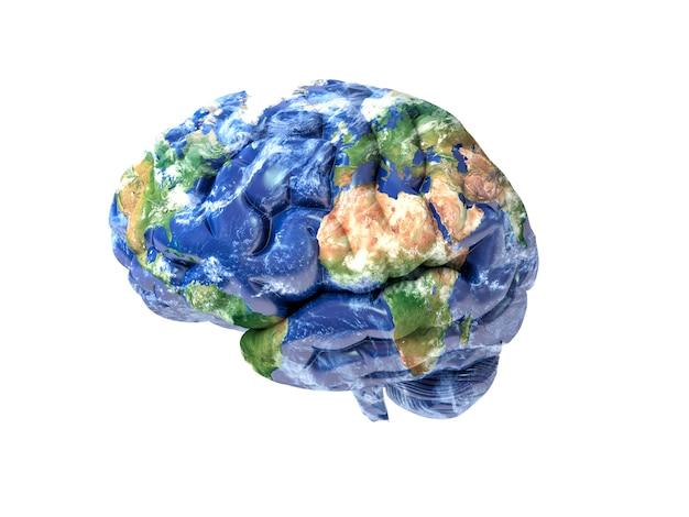 Cérebro da terra