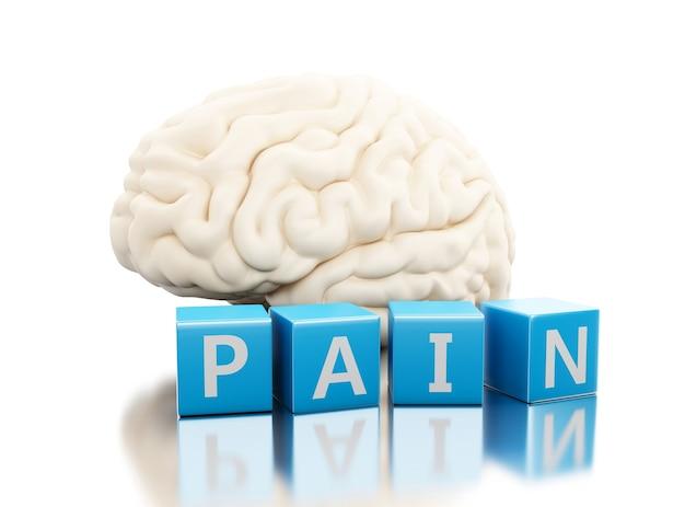 Cérebro humano 3d com palavra de dor em cubos