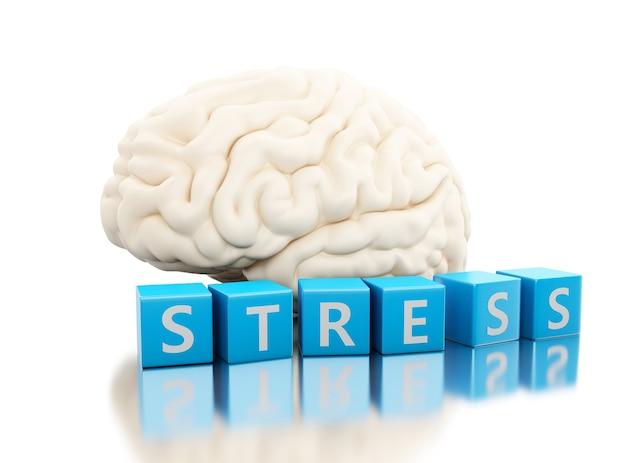 Cérebro humano 3d com palavra de stress em cubos