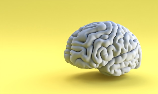 Cérebro humano cinza em amarelo