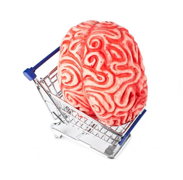 Cérebro humano de borracha no carrinho de compras
