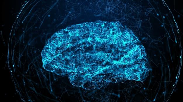 Cérebro humano em fundo digital bule