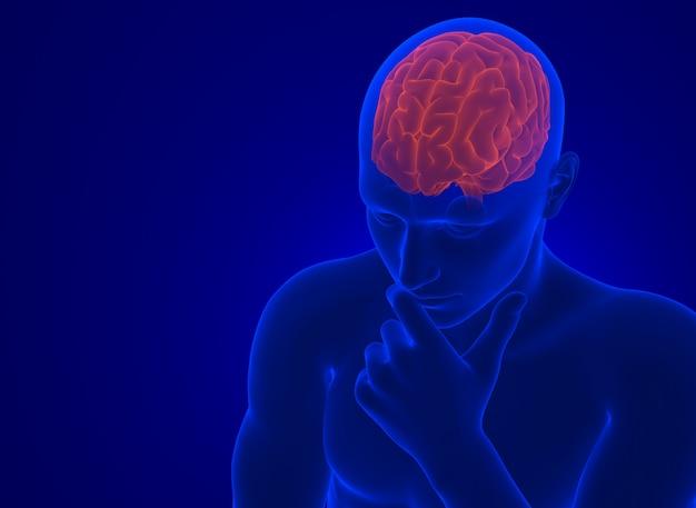 Cérebro humano em raio-x. ilustração 3d contém o traçado de recorte