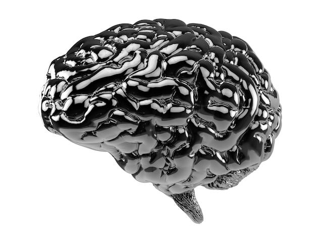 Cérebro humano preto de renderização 3d isolado no branco