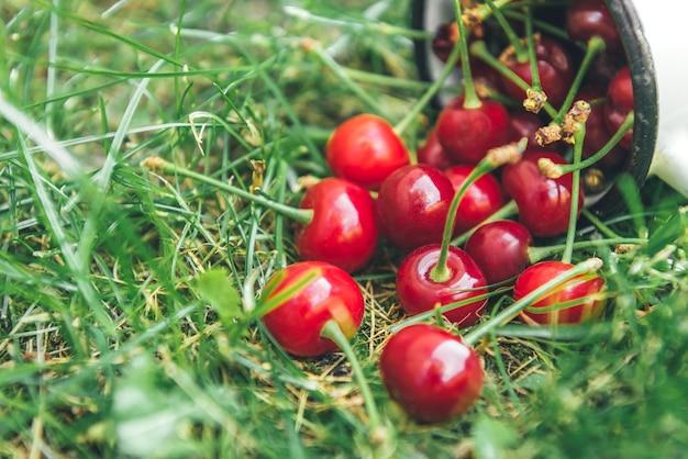 Cereja em caneca branca com folhas verdes na grama