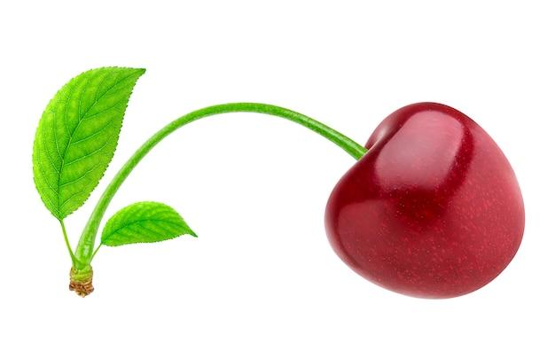 Cereja isolada, cereja vermelha isolada no branco com traçado de recorte