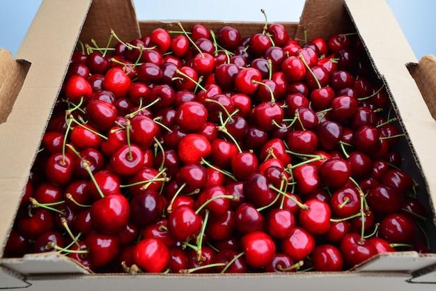 Cerejas maduras caixa de cereja cereja parede cerejas frescas cerejas doces cerejas bing