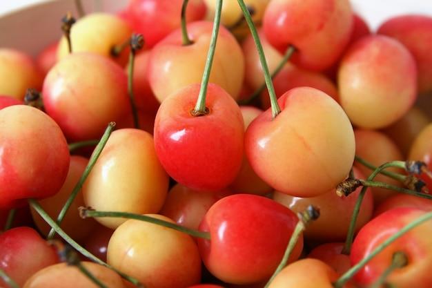 Cerejas rainier vermelhas e amarelas