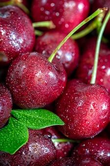 Cerejas vermelhas doces, modelo ascendente próximo