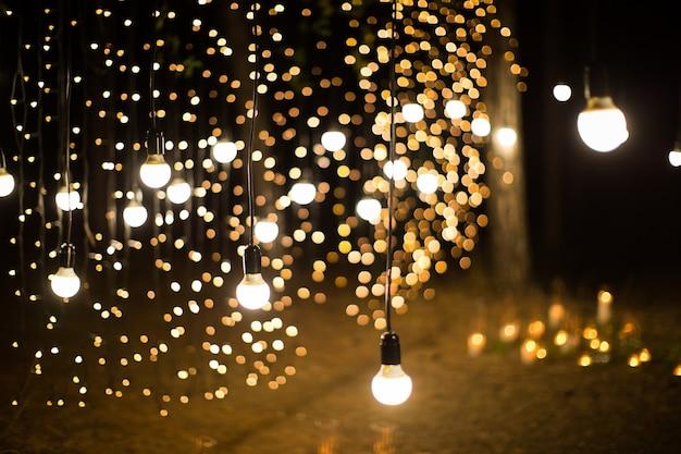 Cerimônia de casamento à noite com velas e lâmpadas na floresta de pinheiros de coníferas