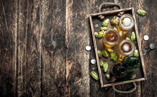 Cerveja fresca em copos com lúpulo verde na velha bandeja na mesa de madeira.