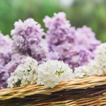 Cesta com close-up de flores lilás em um fundo desfocado natural