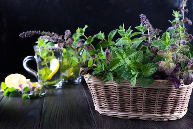 Cesta com hortelã verde fresca e dois copos de vidro com chá de hortelã fresca na mesa escura