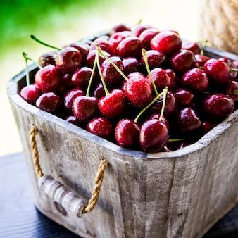 Cesta de cereja. galho de árvore de cereja. cerejas maduras frescas.