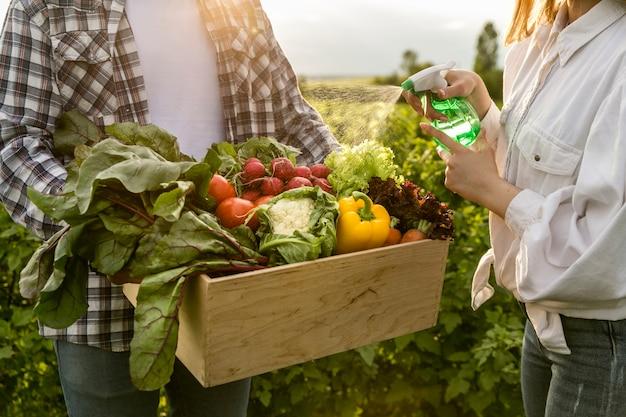 Cesta de close-up de legumes