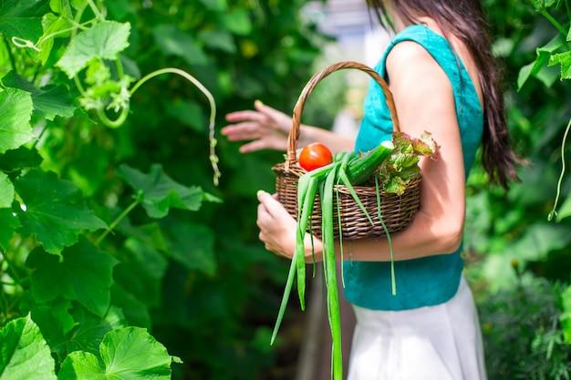 Cesta de close-up de verduras nas mãos da mulher