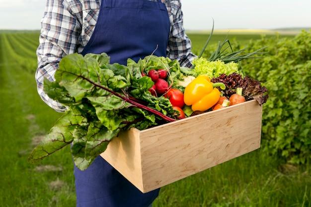 Cesta de exploração masculina de close-up com legumes