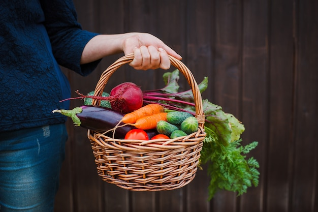Cesta de legumes nas mãos de um fazendeiro