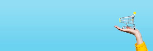 Cesta de opping nas mãos fêmeas em um azul. bandeira. conceito de compra, compras, compras online