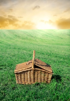 Cesta de piquenique no campo