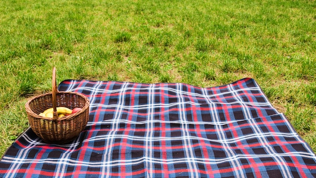 Cesta de piquenique no cobertor sobre a grama verde