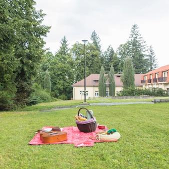 Cesta de piquenique; violão no cobertor sobre a grama verde