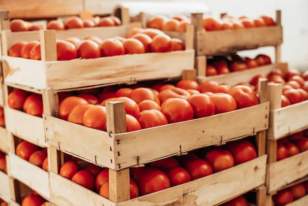 Cesta de tomate. preparando tomates para venda.