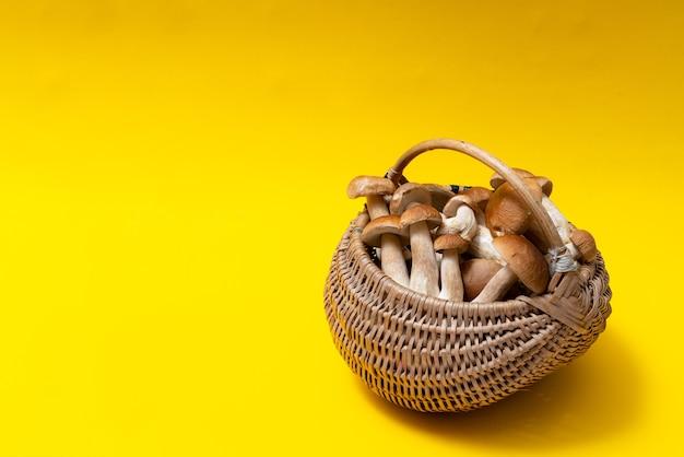 Cesta de vime cheia de cogumelos boletus em fundo amarelo