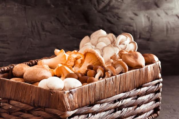 Cesta de vime com cogumelos comestíveis deliciosos raros da floresta